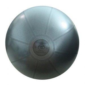 Fitness Mad 500Kg Studio Pro Swiss Ball 55cm